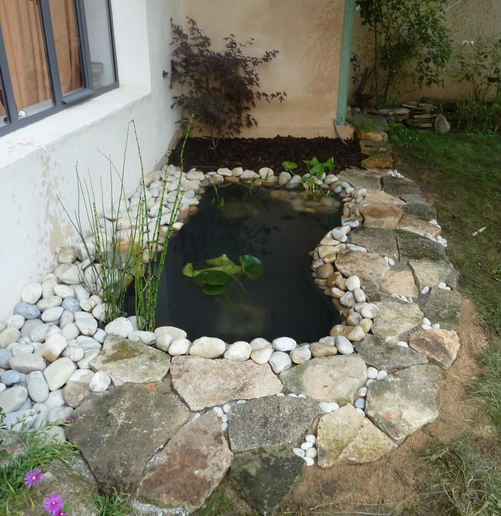 petit bassin (4)